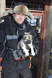 生まれたばかりのハスキー犬かわいい?