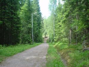 清々しい森の空気を吸い、森林浴を楽しみながらのジョギング、エスポー市