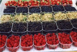 フサスグリ、ラズベリー、露地栽培のイチゴ、野生のブルーベリー