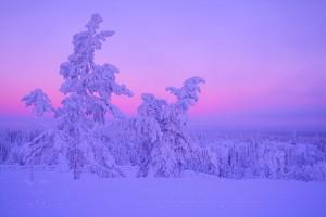 薄紫に染まる空