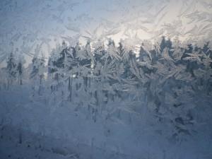 窓に咲く雪の華