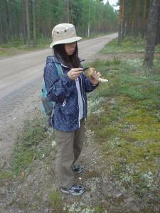 キノコ狩り専用ナイフで松茸の汚れ落とし