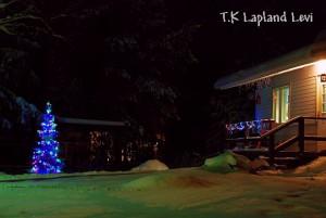 ある家庭の可愛らしいクリスマスツリー