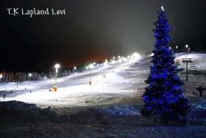 スキー場のツリーも青色!