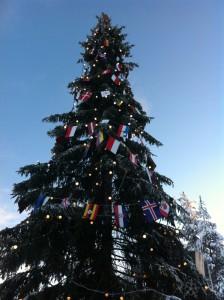 クリスマスツリーのアップ!