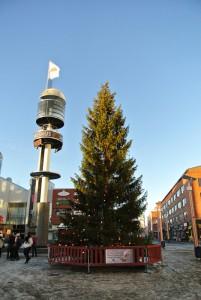 ロヴァニエミにも巨大なクリスマスツリーが登場!